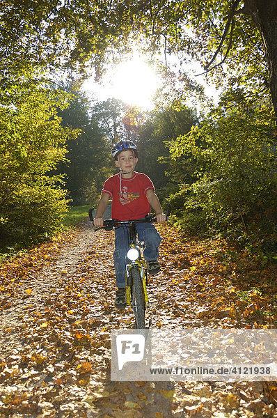 Junge fährt Rad auf einem herbstlichen Waldweg  Naturpark Schönbuch  Baden-Württemberg  Deutschland