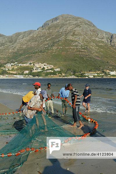Fischer am Strand mit Fischernetz  Hout Bay  Kapstadt  Südafrika