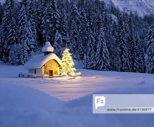 bayern christbaum deutschland ibljbe00783246 d mmerung. Black Bedroom Furniture Sets. Home Design Ideas