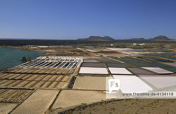 Salt works  Salinas de Janubio  Lanzarote  Canary Islands  Spain