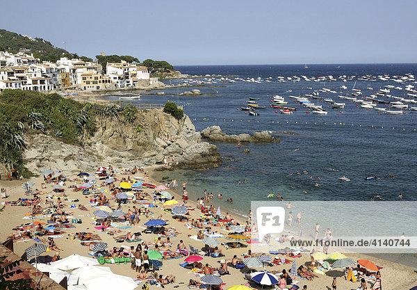 Küste bei Calella de Palafrugell  Costa Blanca  Katalonien  Spanien  Europa