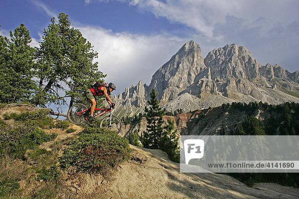Mountainbikerin am Peitlerkofel  Dolomiten  Italien