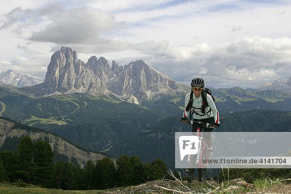 Mountainbikerin am Raschötzer Höhenweg mit Marmolada  Langkofel und Plattkofel  Dolomiten  Italien