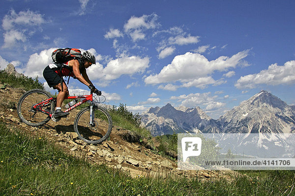 Female mountain biker on the Forcella-Ambrizzola track  Dolomites  Italy
