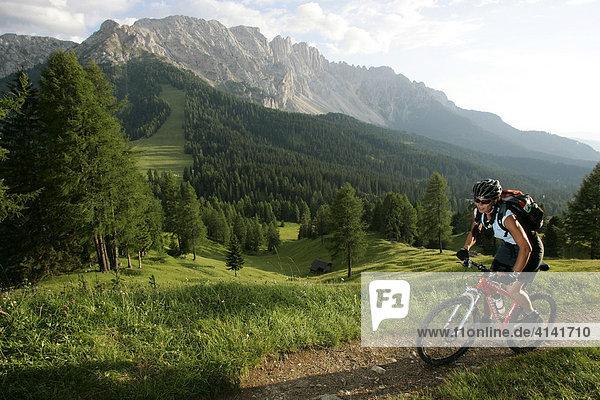 Mountainbikerin am Karerpass  Latemar im Hintergrund  Dolomiten  Italien