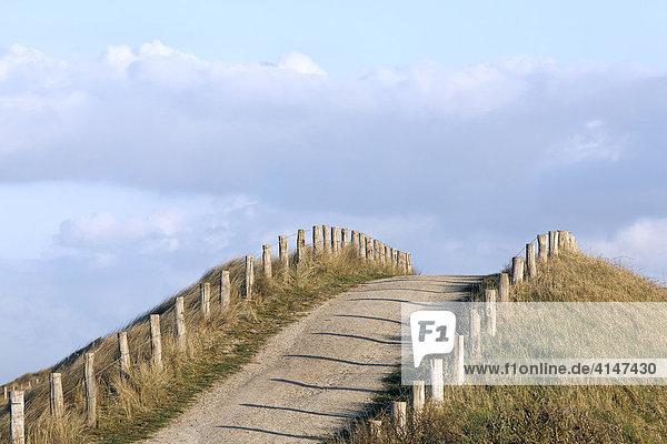 Dünen-Wanderweg bei Zoutelande  Walcheren  Zeeland  Niederlande  Europa