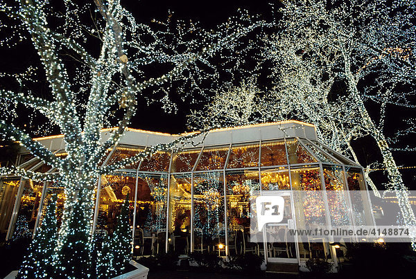 Illuminierte Bäume vor dem Traditionsrestaurant Tavern on the Green  Central Park  New York City  USA