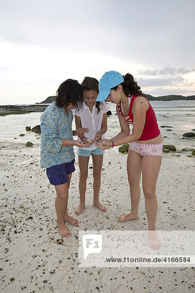 Children searching for seashells and coral along a deserted beach  Lombok Island  Lesser Sunda Islands  Indonesia