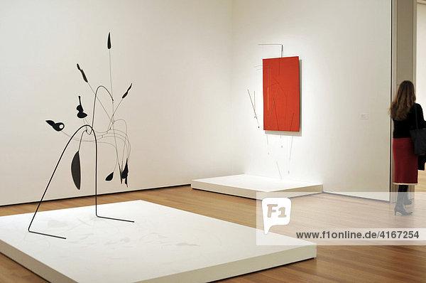 Museum of Modern Art  New York  USA