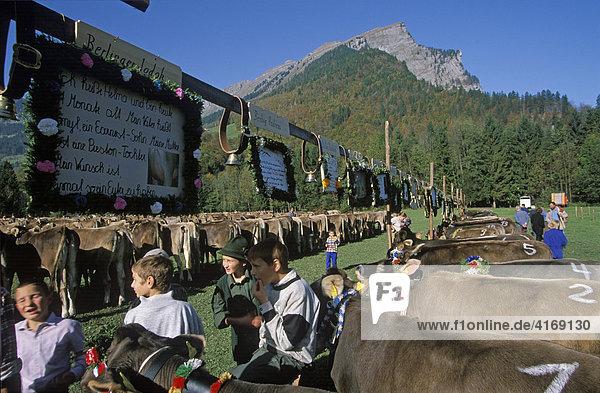 Österreich Vorarlberg Bregenzer Wald Au Viehausstellung