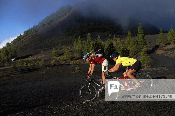 Mountain bikers  Montana Quemada  La Palma  Canary Islands  Spain