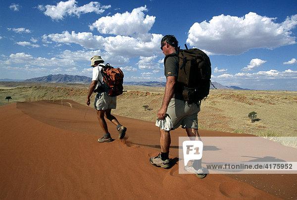 Tok Tokkie Trail  Männer auf Düne  Namib Rand Nature Reserve  Namibia  Afrika