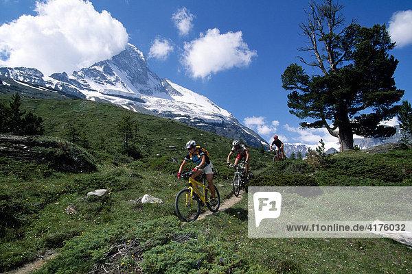 Mountain bikers  the Matterhorn  Stafel  Valais  Switzerland  Europe