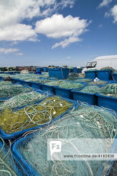 Fischernetze im Hafen von Roscoff  Bretagne  Frankreich