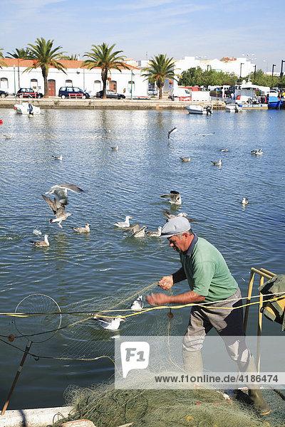 Fischer am Gilao  Tavira  Algarve  Portugal
