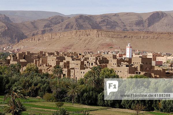 Oasenstadt in der Todraschlucht  Quarzazate  Marokko  Nordafrika