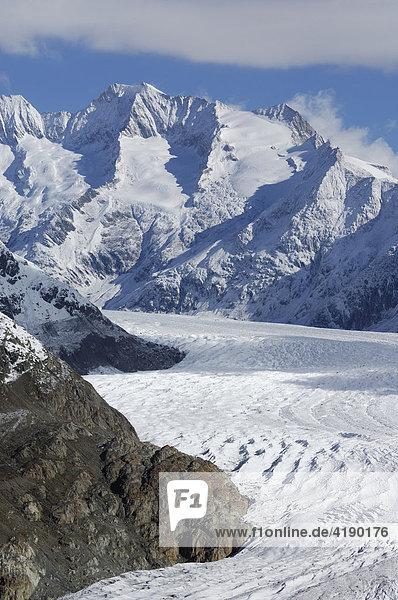 Grosser Aletschgletscher vor frisch verschneiten Bergen im Aletschgebiet  Goms  Wallis  Schweiz