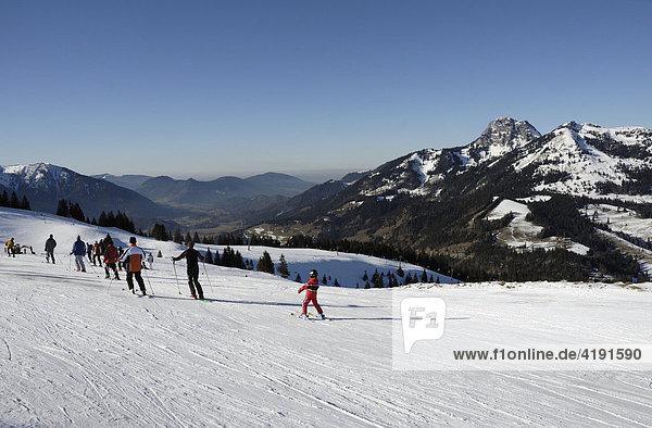 Skifahrer am Sudelfeld  hinten Wendelsteinmassiv  Bayerische Alpen  Deutschland  Europa