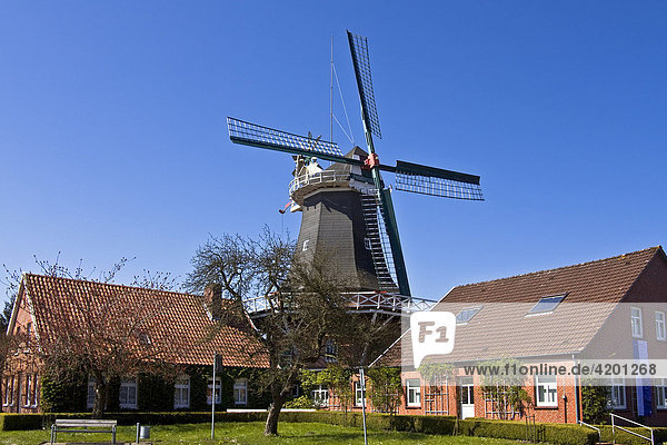 Historische Windmühle  zweistöckiger Galerieholländer mit Windrose  Peldemühle  Esens  Ostfriesland  Niedersachsen  Deutschland  Europa