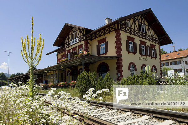Station der BOB Bayerische Oberlandbahn Bahnhof Gmund am Tegernsee mit Königskerze Verbascum densiflorum Bayern Deutschland