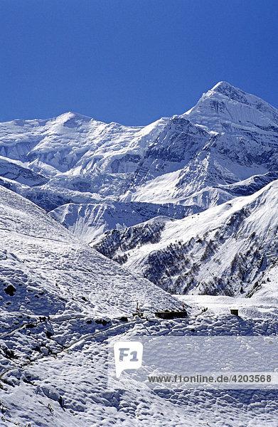 Tilicho Peak (7134 m)  Annapurna Gebiet  Himalaya  Nepal  Asien