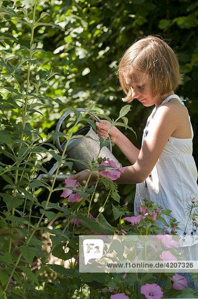 Blondes Mädchen gießt Blumen