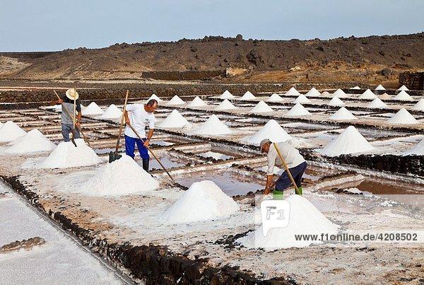 Salinas de Janubio Isla Lanzarote Provincia Las Palmas Islas Canarias España