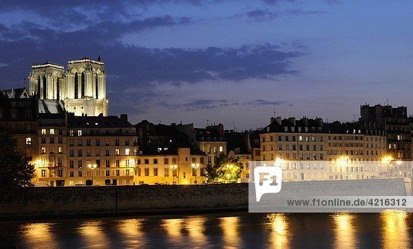 Ile de la Cité  Seine river  Notre-Dame  Paris  France