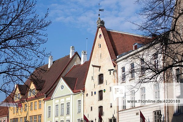Estonia  Tallinn  Old Town  building detail on Lai Street