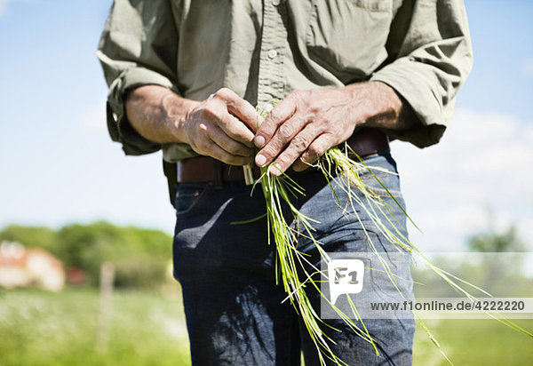 Man with grass in hand