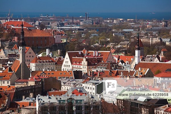 Estonia  Tallinn  Old Town  elevated view from the southeast
