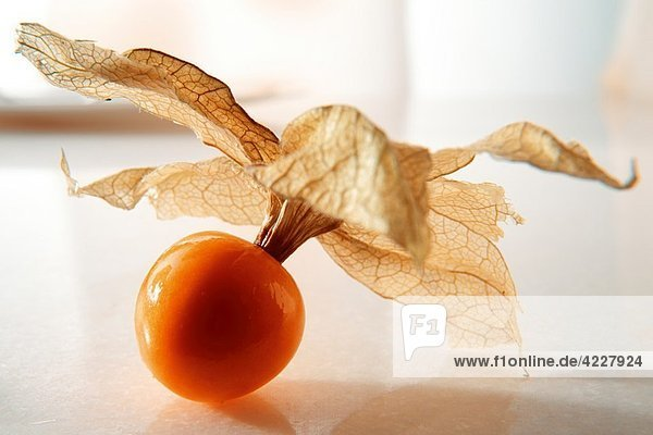 Fresh Incan Berry - also known as Cape Gooseberry  agauaymanto berries or Goldenberries source of Vitamin P and bioflavinoids Fresh Incan Berry - also known as Cape Gooseberry, agauaymanto berries or Goldenberries source of Vitamin P and bioflavinoids