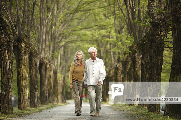 Senior couple walking hand in hand on a tree-lined road  Italy  Telve
