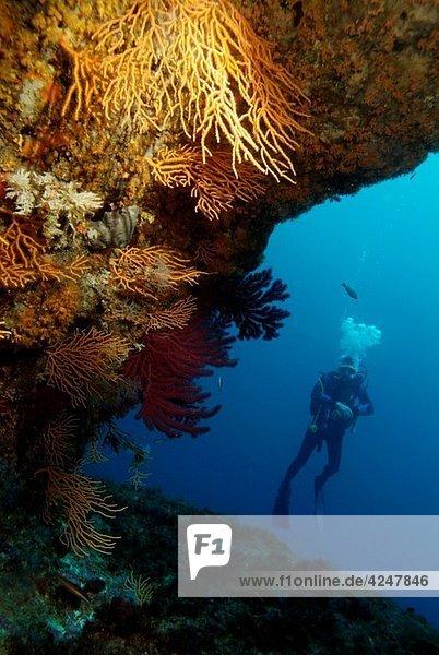 France marseille riou island imperial de terre a scuba diver in the blue near a cave entrance