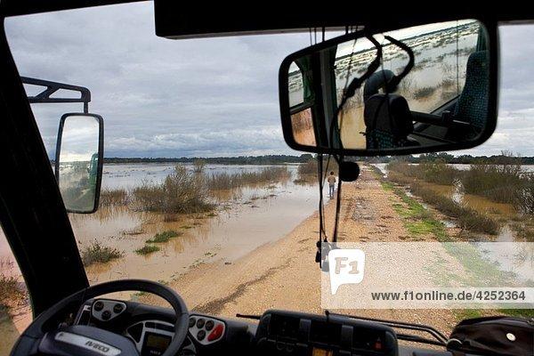 Flood plain in Doñana National Park seen from inside a bus El Rocío Huelva  Andalucia