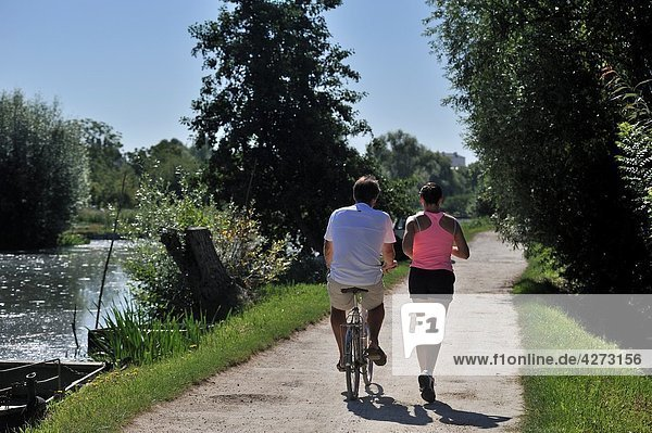 jogging in the Marshes in Bourges  Cher department  Berry province  region of Centre  France  Europe