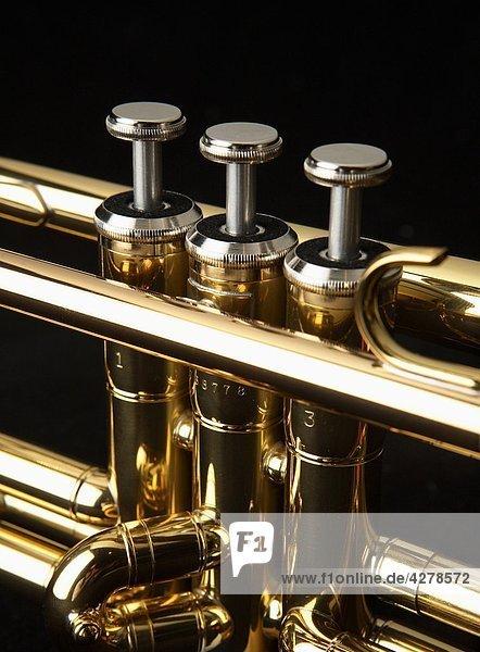 Trompete close up