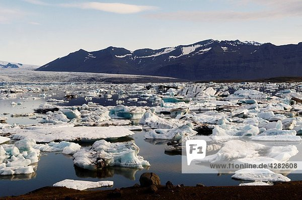 Iceland  Jokulsarlon glacier  icebergs floating on water.