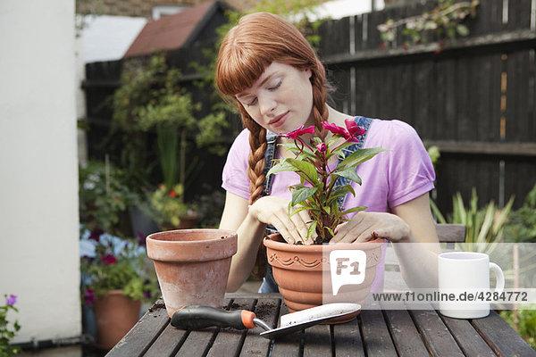 Frau Umtopfpflanze sitzend im Garten