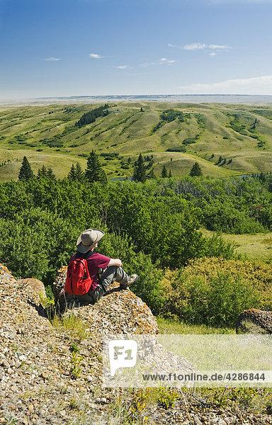 Hiker at Conglomerate Cliffs lookout  Cypress Hills Interprovincial Park  Saskatchewan  Canada