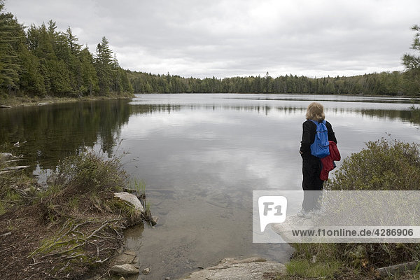 Senior woman looking out over a lake  Algonquin Park  Ontario  Canada