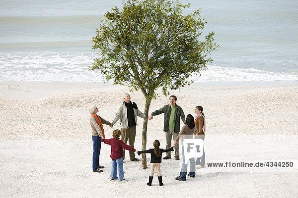 Gruppe von Menschen halten Hände im Kreis um einsamen Baum am Strand