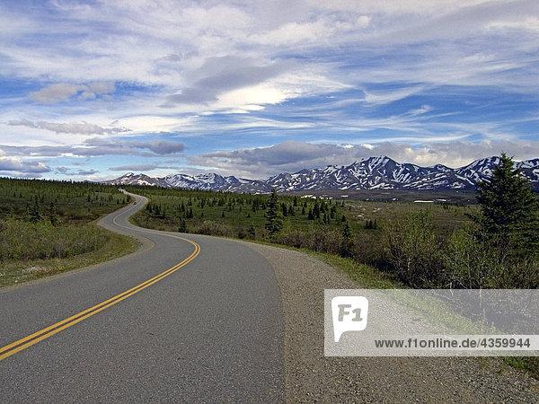View of Alaska Range from Denali National Park road Interior Alaska Summer