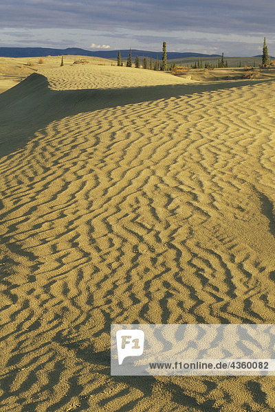Great Sand Dunes at Kobuk Valley National Park AK Fall