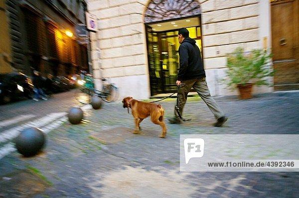 Piazza Mattei. Rome. Lazio. Italy.