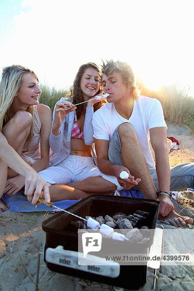 Friends having a bbq on a beach
