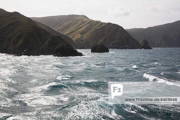 Neuseeland  Südinsel  Blick auf Marlborough Sounds