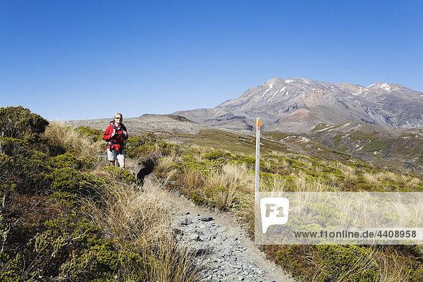 Neuseeland  Nordinsel  Frau beim Wandern im Tongariro-Nationalpark mit Berg Ruapehu im Hintergrund