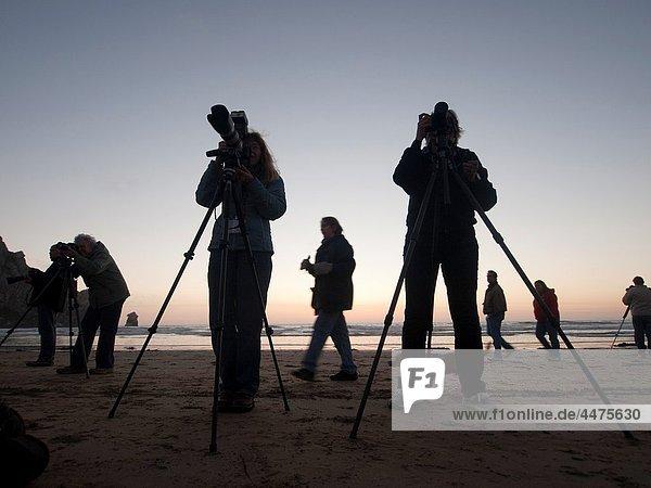 Photographers at twilight  Morro Bay  California  United States America