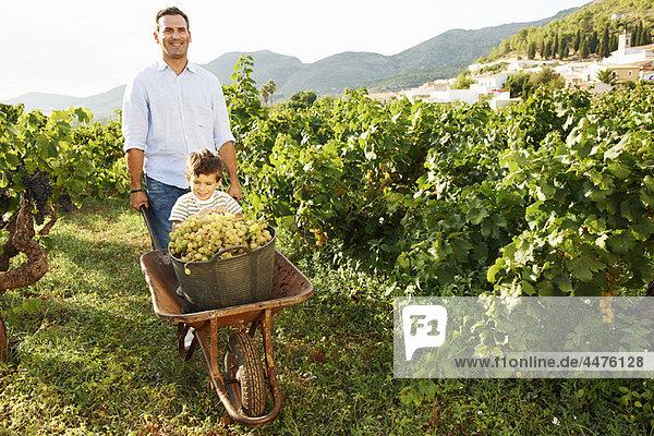 Vater und Sohn mit Trauben im Weinberg